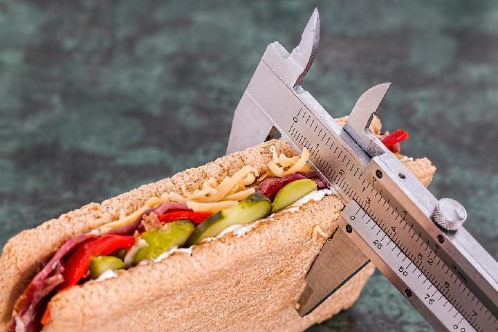 Biggest Criticisms - Dukan diet