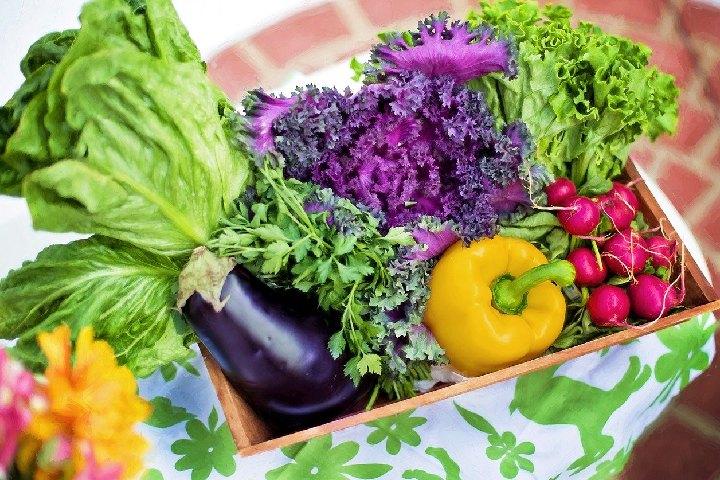 Eat Lots of Vegetables - Detox Diet