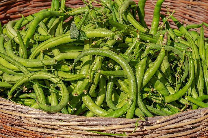vegetables are essential - Detox Diet